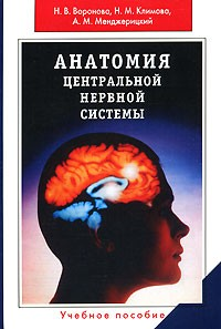 Анатомия центральной нервоной системы