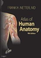Atlas of Human Anatomy. Netter F.H. (Атлас анатомии человека. Неттер Ф.Х.)