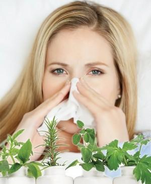 Применение эфирных масел при простуде и гриппе
