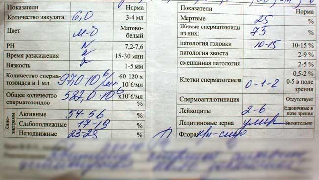Эритроциты 0 1 в спермограмме