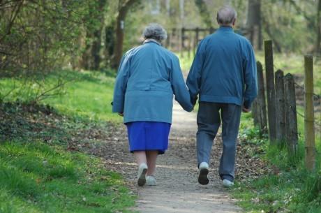 Регулярные прогулки улучшают работу мозга