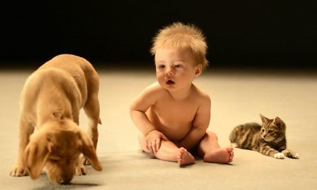 Дети гораздо реже страдают от аллергии и астмы, если в первый год жизни они  подвергаются воздействию бытовых бактерий и аллергенов.