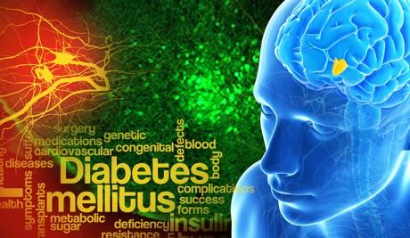 Источник сахарного диабета находится в гипоталамусе