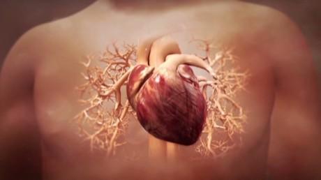 """Ученые создали """"биологический кардиостимулятор"""" для лечения нарушений сердечного ритма"""