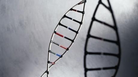 Исследователи говорят, что они определили конкретные кластеры генов, связанные с 8 типами шизофрении, все из которых представлены различными симптомами.