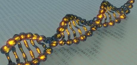 Изменения в действие одного гена поможет контролировать наркоманию и депрессии.