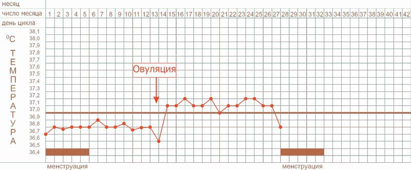 График базальной температуры норма