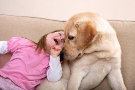 Исследование показало, что, собачья терапия несет успокаивающий эффект детям  больным раком.