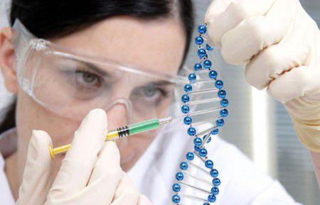 Генетическая программа влияет на старческие болезни
