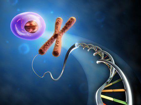 Золендронат влияет на клетки, защищая их от старения