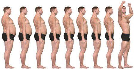 Напоявление лишнего веса влияет рост костей тазового отдела— Ученые
