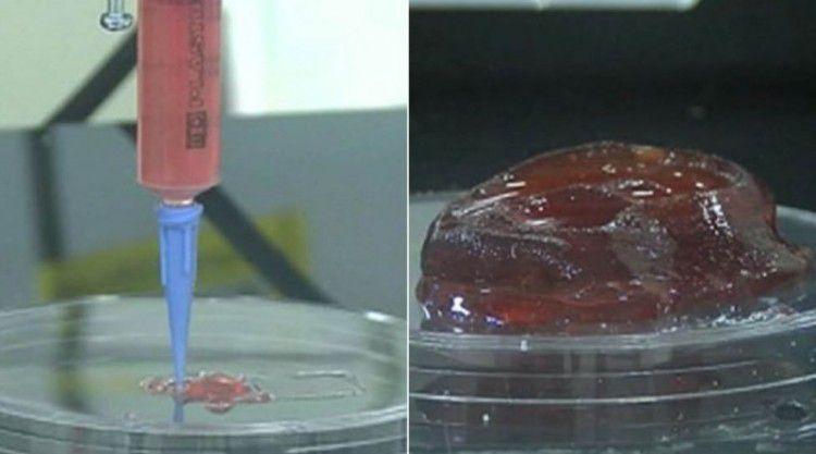 3D-принтер строит желеобразную форму, которая содержит клетки человека