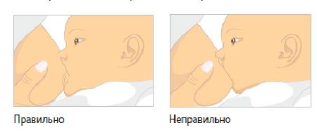 Правильное и неправильное прикладывание малыша к груди