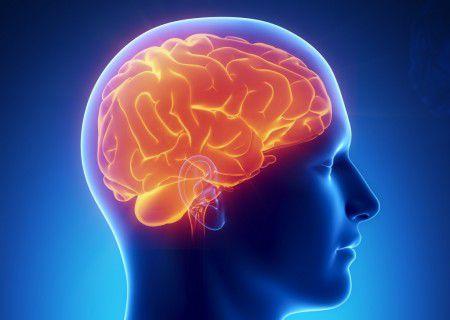 Клетки кожи помогут лечить рак мозга после операции