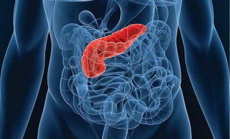 Ученые создали устройство, доставляющее токсичный препарат для борьбы с опухолью поджелудочной железы прямо в цель