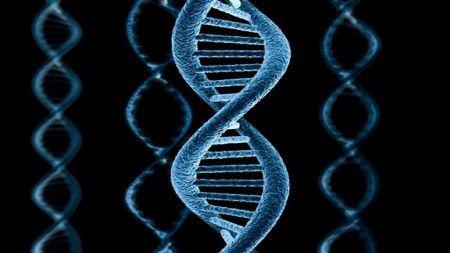 Участки РНК позволяют предотвращать рак