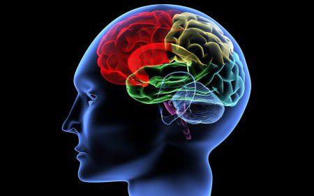 Память при болезни Альцгеймера можно восстановить