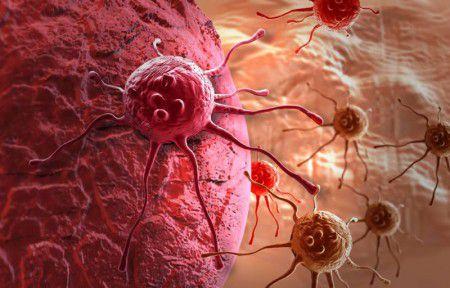Свечение опухолевых клеток укажет на их гибель